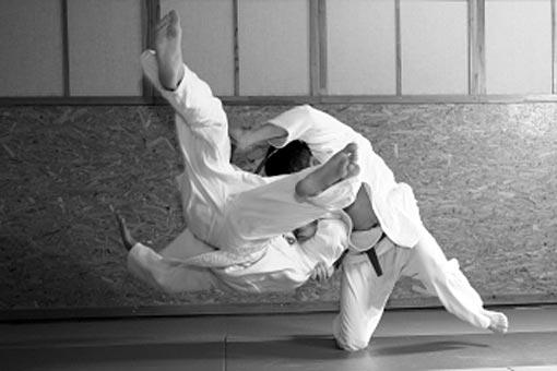 Judo, lutte