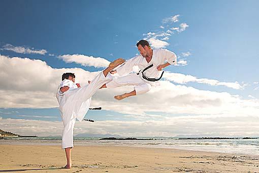 Karaté, kung-fu, taekwondo