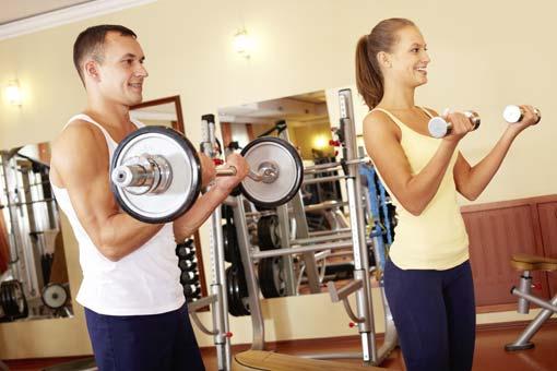 Les muscles au cours du sport