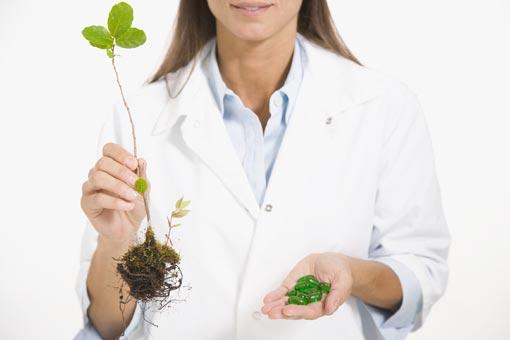 Les produits de phytothérapie sont-ils efficaces ?